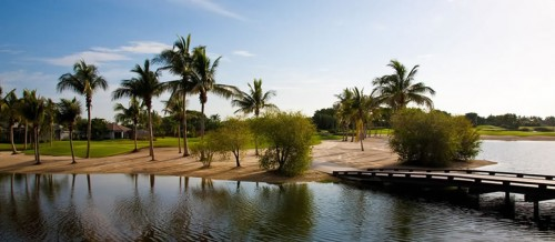 Grey Oaks Palm Course