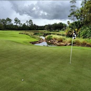 Forest Glen Golf