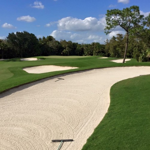 Old Florida Golf