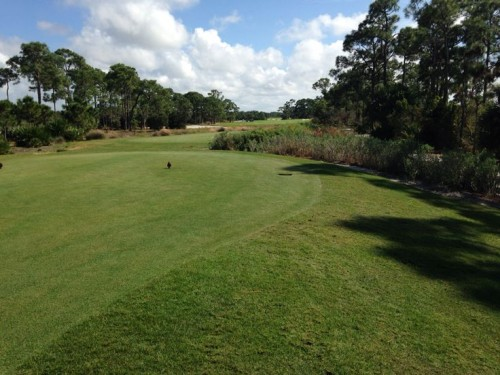 Old Collier Golf Course
