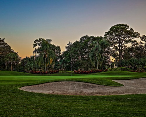 Forest Golf Club