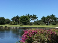 strong home sales in Naples Golf Communities