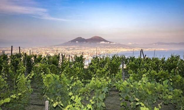 Napoli, la Vigna di San Martino