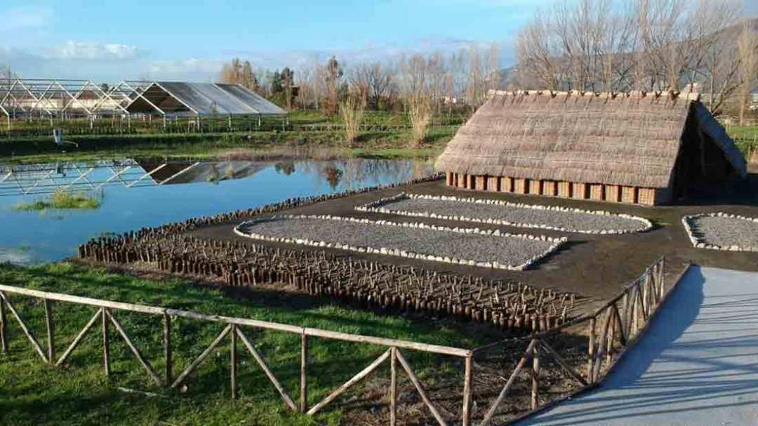 Poggiomarino, Parco Archeologico di Longola