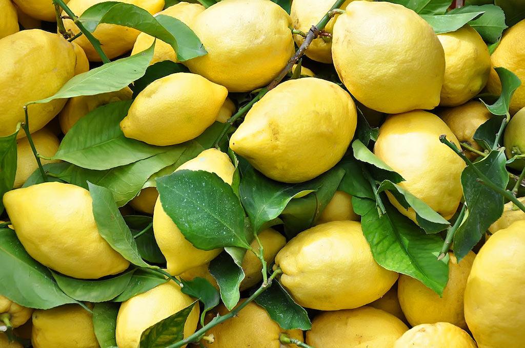 Limoni Costa d'Amalfi