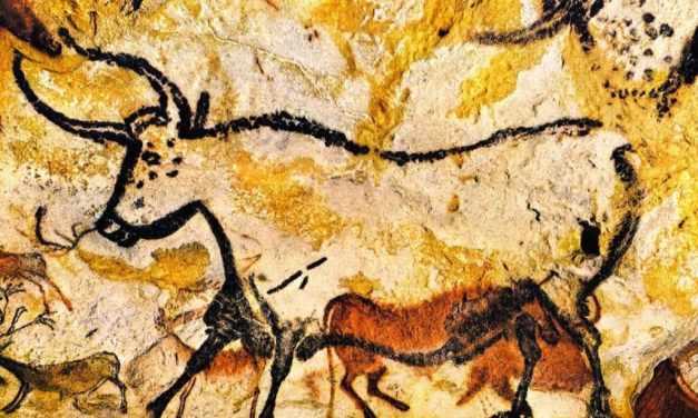 Al MANN la mostra dedicata alle Grotte di Lascaux