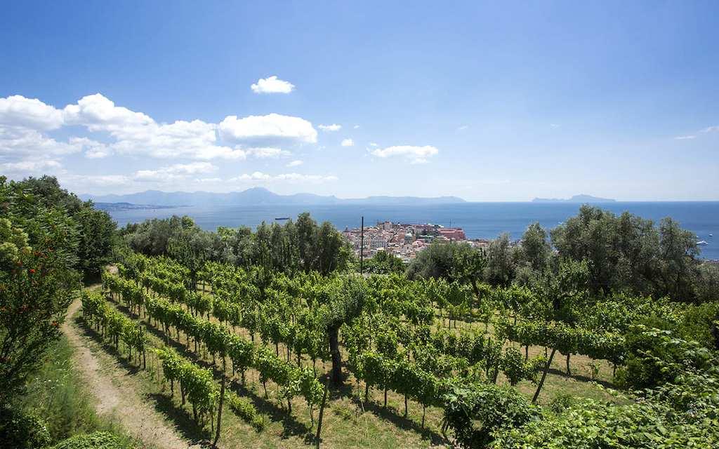 Vigna di San Martino, passeggiata con aperitivo