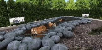 Zoo di Napoli: per i bambini ingresso gratis a luglio