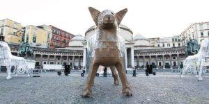 Foof Museo del cane