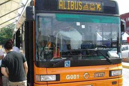 alibus