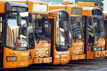 autobus anm