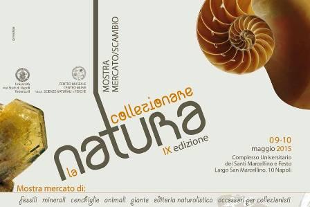 collezionare-la-natura