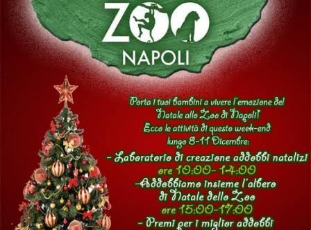 Addobbi Natalizi Napoli.Week End Dedicato Al Natale Allo Zoo Di Napoli 4 Giorni Di