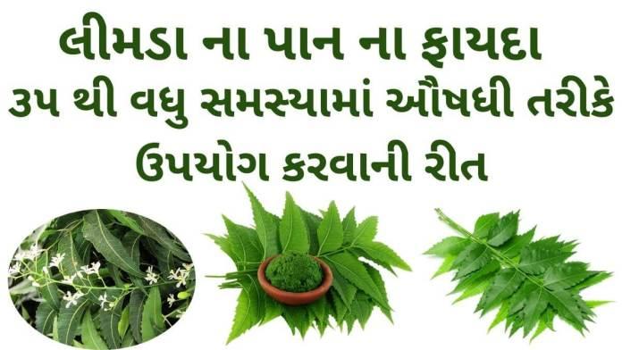 limda na pan na fayda in Gujarati - લીમડા ના પાન ના ફાયદા - neem leaves benefits in Gujarati – લીમડા ના પાન ના ઔષધીય પ્રયોગો – લીમડા ના પાન નો ઉપયોગ