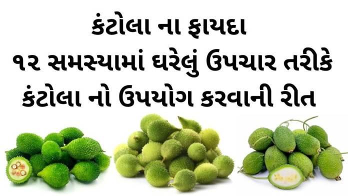 કંટોલા ના ફાયદા - કંકોડા ના ફાયદા અને ઘરેલું ઉપચાર - kantola na fayda - spiny gourd benefits in Gujarati