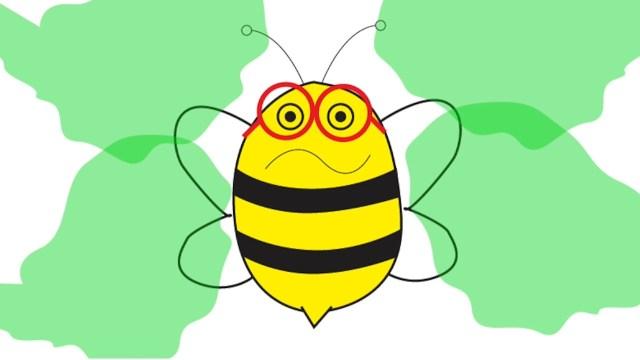 La abeja bini con pesticidas