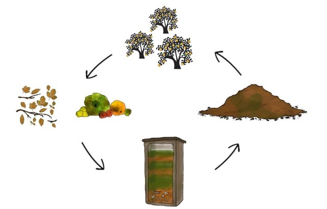 how to avoid food waste