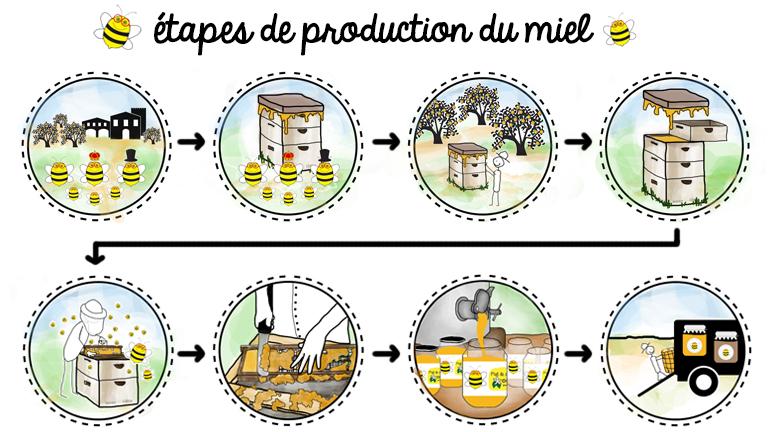 blog agriculture et apiculture de la ruche ta porte les tapes de fabrication du miel. Black Bedroom Furniture Sets. Home Design Ideas