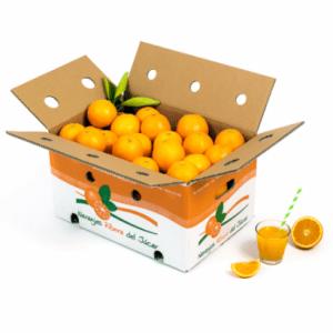 cuando seas padre comerás naranjas