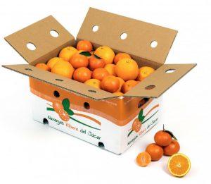 regalo-caja-de-navidades-mixta-naranjas-mandarinas