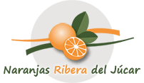 Naranjas Ribera del Júcar
