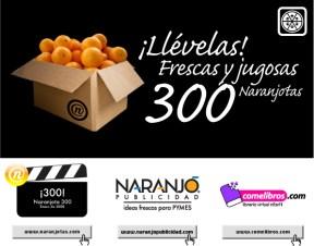 Naranjota300