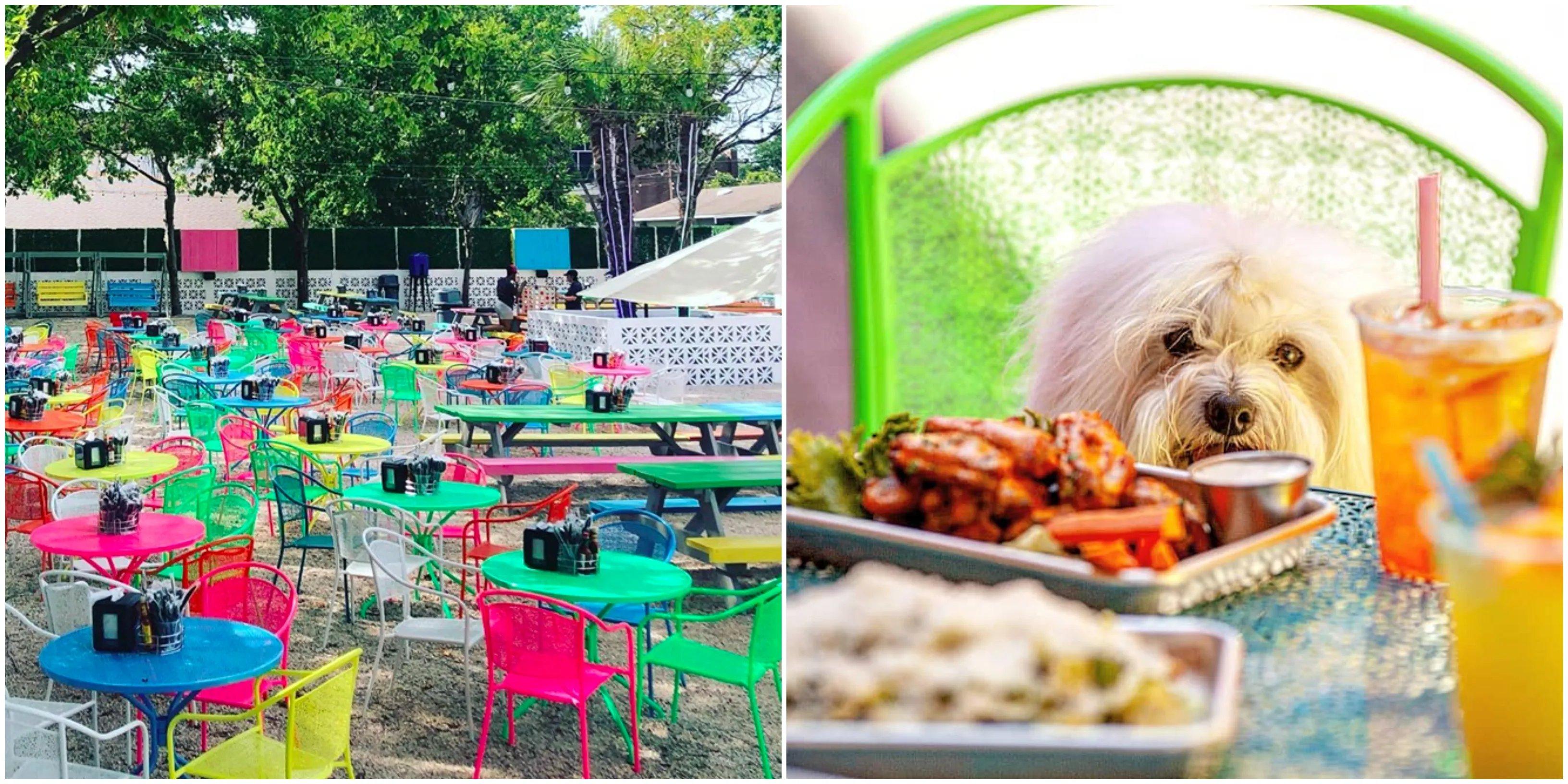 https www narcity com dallas toller patio bar in dallas is a colorful patio wonderland