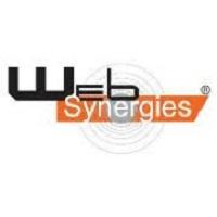 Web Synergies