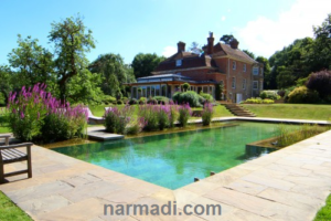 Natural Swimming Pool (NSP), the New Concept of Modern Pool