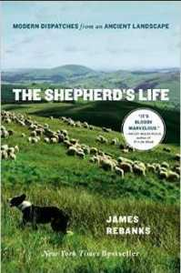 The Shepherds life cover