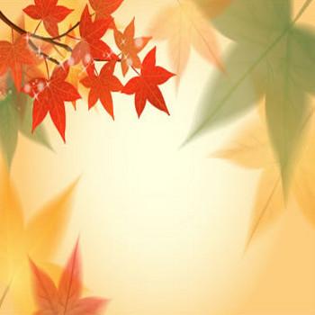 紅葉,もみじ/秋の背景イメージのイラストai/eps | ベクタークラブ<イラストレーター素材が無料>