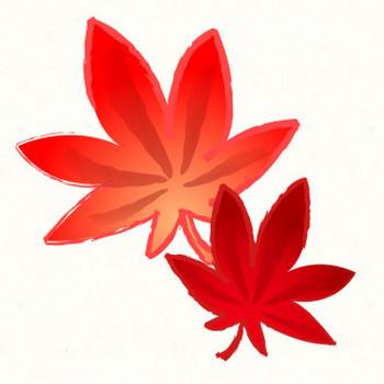 2枚の紅葉(モミジ) | 動物・季節・食べ物のフリーイラスト素材ならぴくらいく