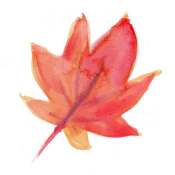 紅葉|Sui-Sai|水彩画イラストフリー素材集