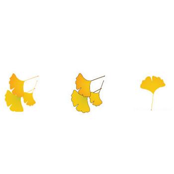 無料素材の『季節・行事素材のイラスト市場』秋の素材・いちょうのイラスト