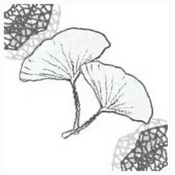 フリー素材:アイコン(twitter,mixi,ブログ);モノクロの木の葉(イチョウ)とガーリーなレースの飾り枠;200×200pix | webデザイン素材 tigpig