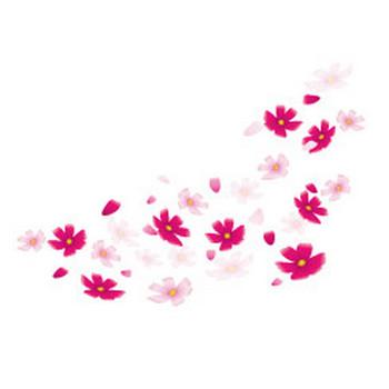 無料|WEB素材|イラスト|秋の花/コスモス2