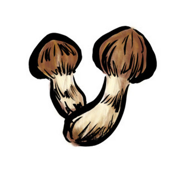 秋の味覚の松茸きのこ墨絵イラスト | 素材屋きんぎょ