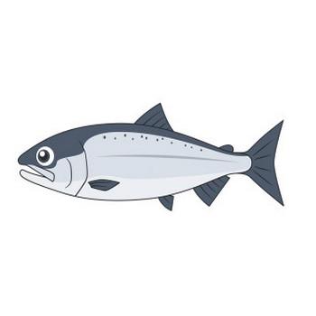 海にいるサケ(魚)のイラスト【無料・フリー】