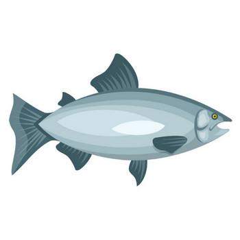 [無料イラスト] 鮭 - パブリックドメインQ:著作権フリー画像素材集