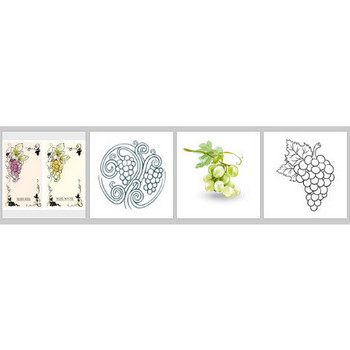 白ブドウ に関するベクター画像、写真素材、PSDファイル | 無料ダウンロード