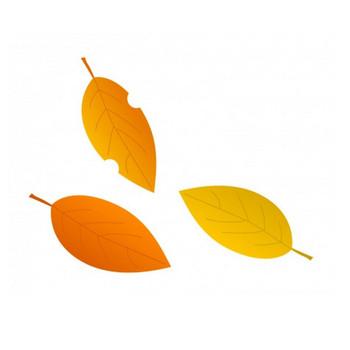 落ち葉・紅葉イラスト素材 | イラスト無料・かわいいテンプレート