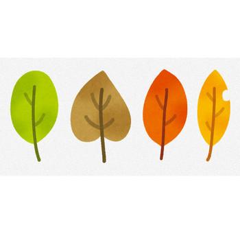 いろいろな落ち葉のイラスト | かわいいフリー素材集 いらすとや