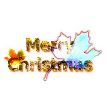 Merry Christmas/クリスマスロゴ素材・花柄のテクスチャ