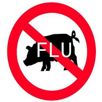 豚インフルエンザ 写真素材 | 無料ダウンロード