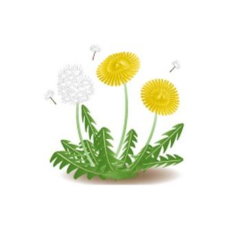 無料|WEB素材|イラスト|春の花/タンポポ2