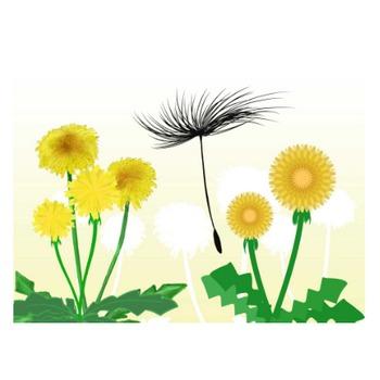 たんぽぽイラスト - 可愛い種と花の無料素材集 - チコデザ