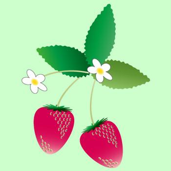 春の食べ物|無料イラスト|ダウンロード|PNG/いちご1