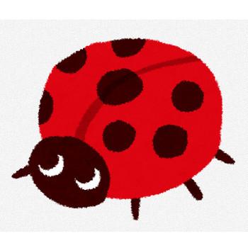てんとう虫のイラスト | かわいいフリー素材集 いらすとや