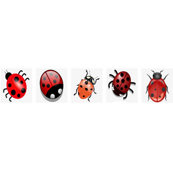 Jilagan Ladybug Clip Art at Clker.com - vector clip art online, royalty free & public domain