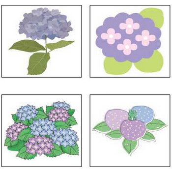 アジサイの花のイラスト・画像/無料のフリー素材集【百花繚乱】